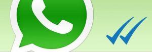 20141106_whatsapp_spunte_blu